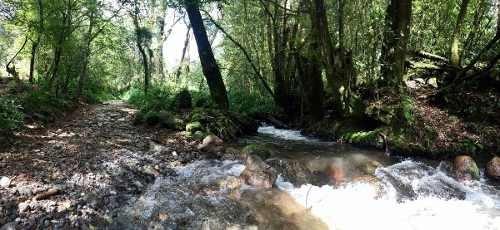 terreno dos ríos en los alamos