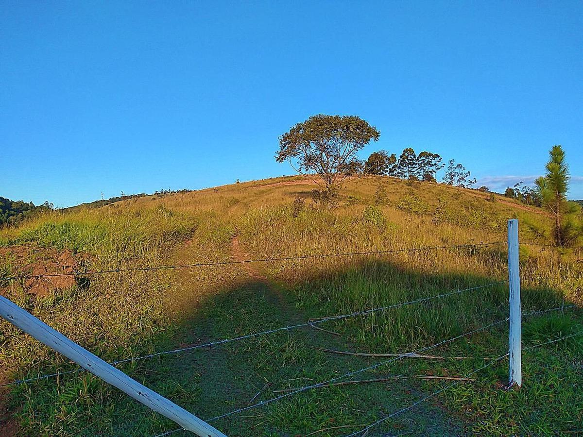 terreno e natureza -36