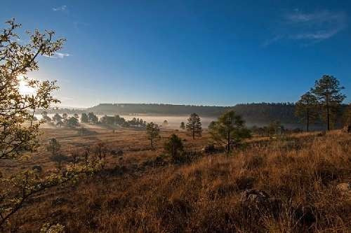 terreno eco turistico bosques de llano grande