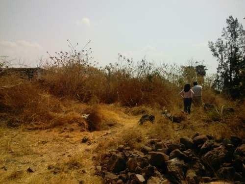 terreno ecológico en oaxtepec
