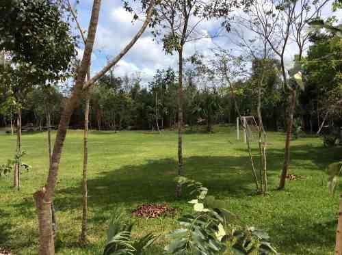 terreno ejido leona vicario con cenote ideal para desarrollo vacacional en venta en cancún c1687