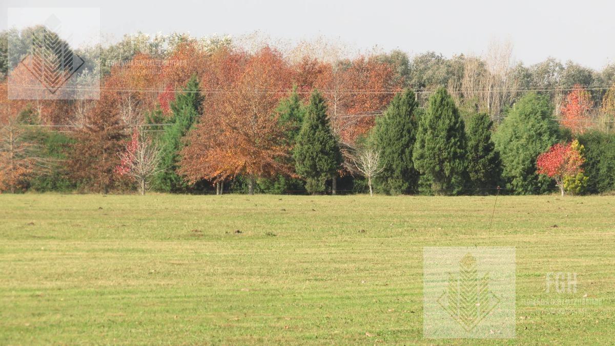 terreno - el campo - fincas exclusivas cardales