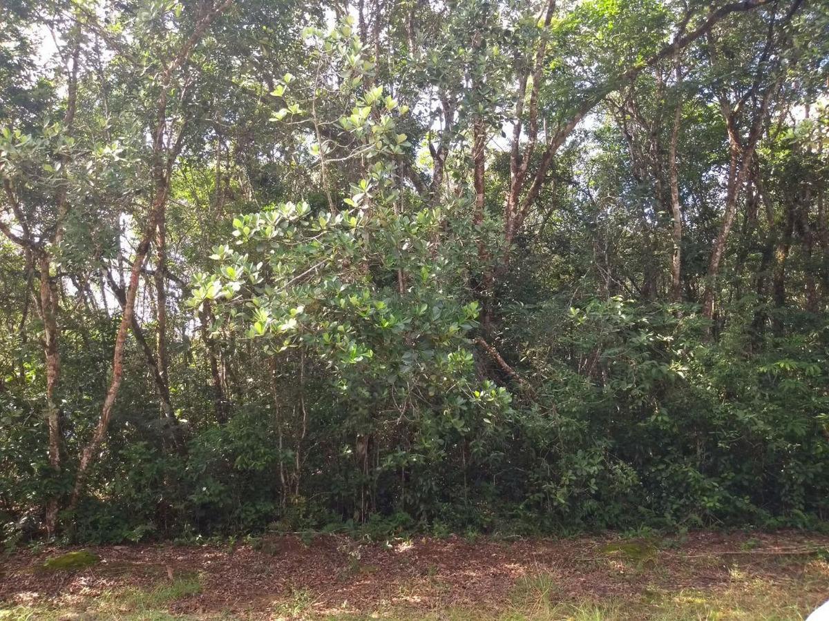 terreno em área de chácara em itanhaém r$ 10 mil á vista