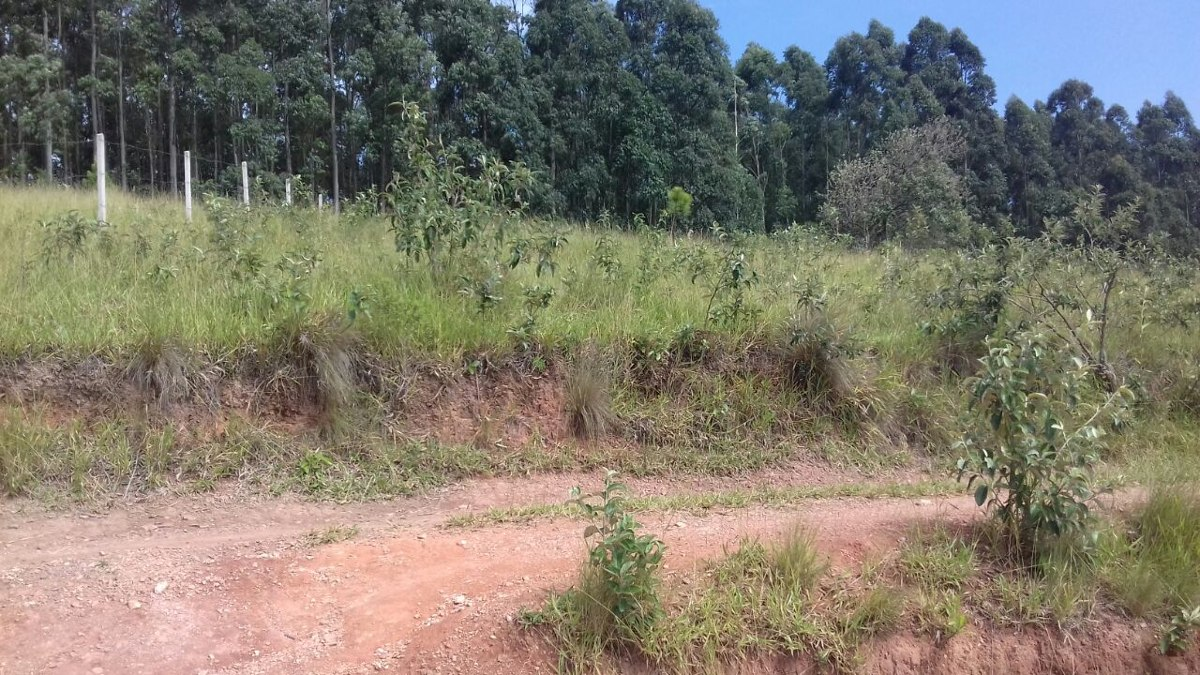 terreno em atibaia 600 m² com doc. ok. cód. smp-2