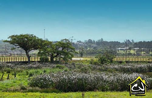 terreno em condomínio - bairro centenário - ter00800