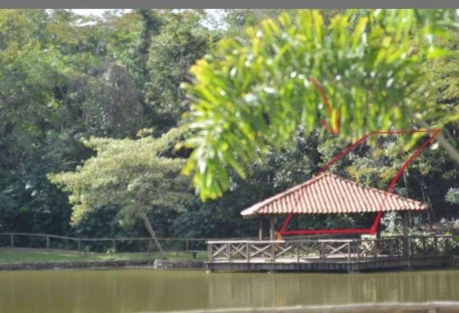 terreno em condomínio do lago, goiânia/go de 0m² à venda por r$ 330.000,00 - te248759