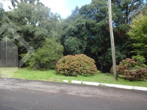terreno em condominio - mato queimado - ref: 219564 - v-219564