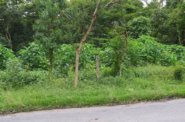 terreno em fazendinha, carapicuíba/sp de 0m² à venda por r$ 330.000,00 - te310210
