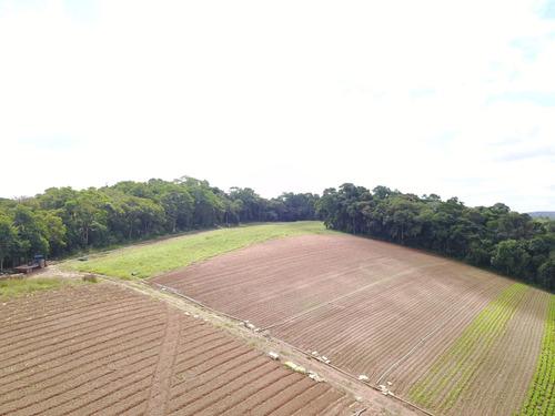 terreno em ibiúna 1000 m2 demarcados e planos j