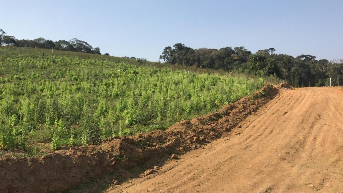 terreno em ibiúna 600 m2 25 mil c.