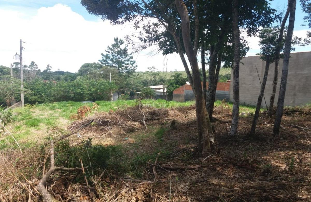 terreno em ibiúna