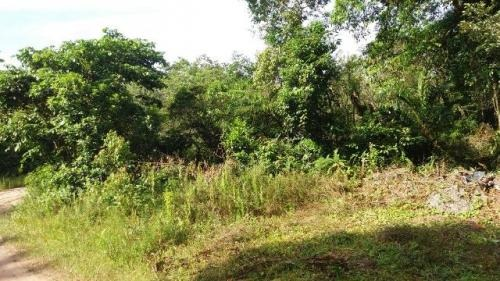 terreno em itanhaém lado serra à 3000 mts da rodovia