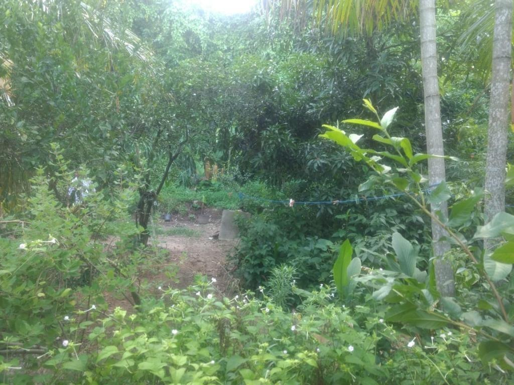 terreno em itapeba, maricá/rj de 0m² à venda por r$ 140.000,00 - te212414