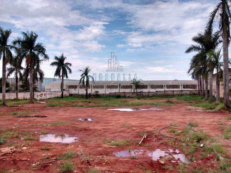 terreno em jaboticabal bairro centro - v316700