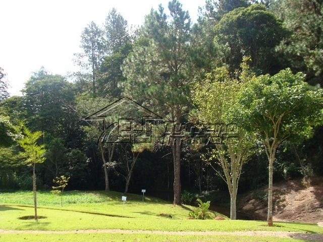 terreno em jambeiro - santa bárbara