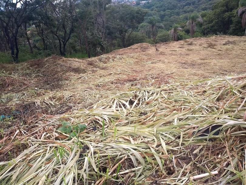 terreno em jardim são gonçalo, mairiporã/sp de 0m² à venda por r$ 350.000,00 - te515805