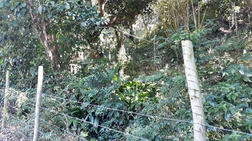 terreno em piratininga, niterói/rj de 0m² à venda por r$ 400.000,00 - te243747