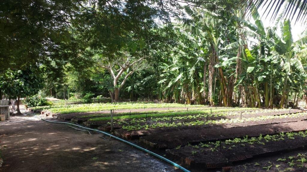 terreno em reta tabajara, macaíba/rn de 0m² à venda por r$ 95.000,00 - te552014