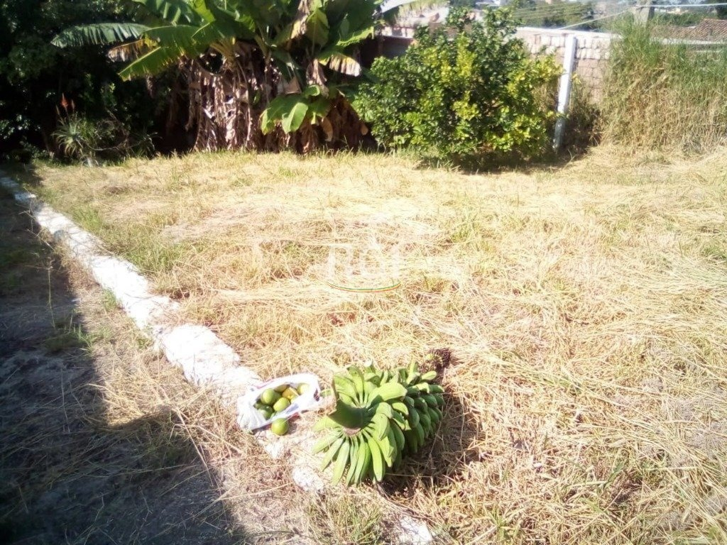 terreno em santa isabel - li50877269