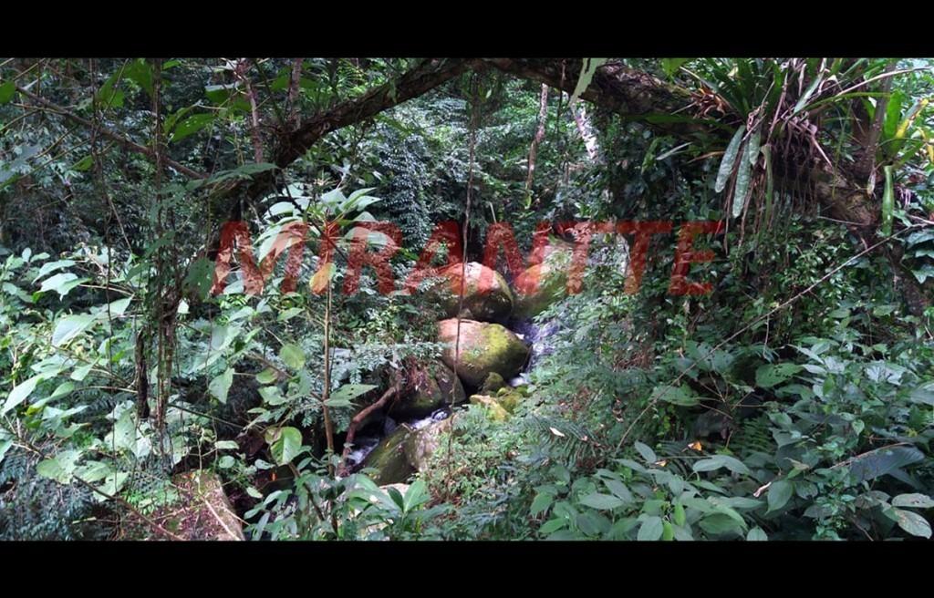 terreno em serra da cantareira - são paulo, sp - 317207