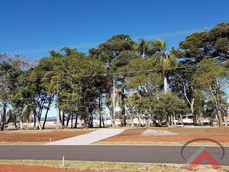 terreno em são josé dos pinhais - 0964 - 3400263