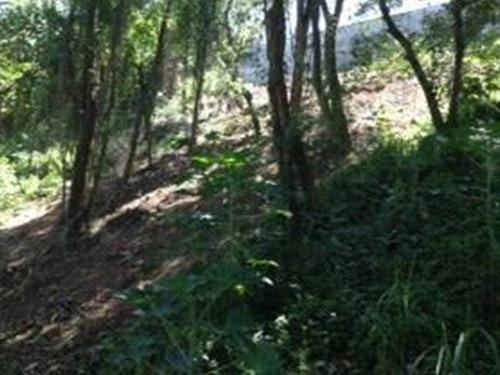terreno em são paulo - 312.0 m2 - código: 521 - 521