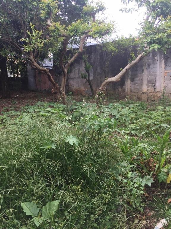 terreno em vila nova curuçá, são paulo/sp de 0m² à venda por r$ 320.000,00 - te233828