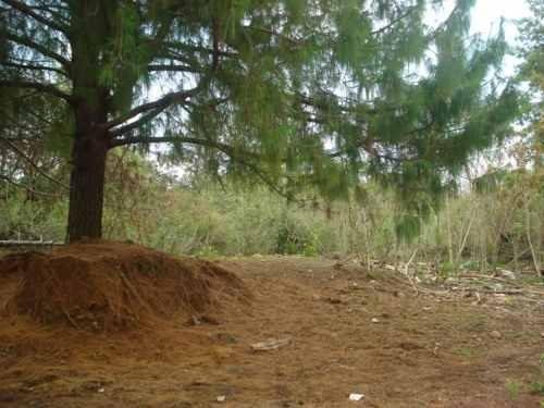 terreno en ahuatepec, cuernavaca