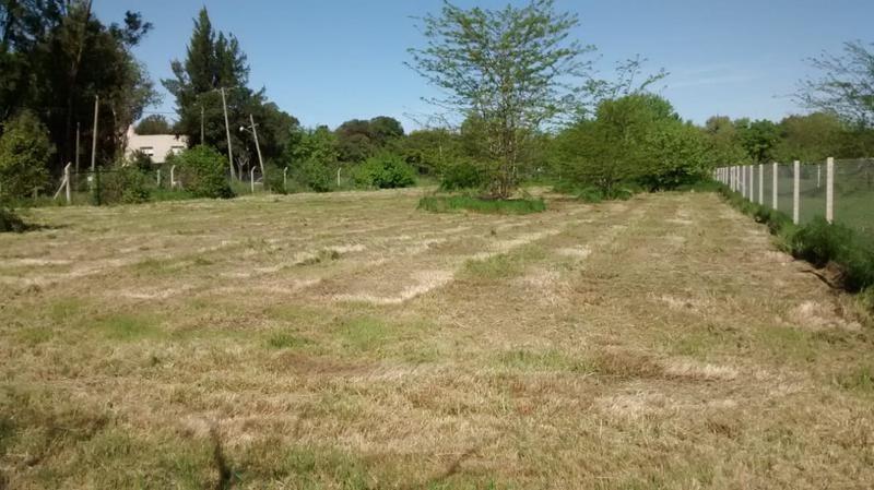 terreno en alquiler en 141 e/ 415 y 417 villa elisa - alberto dacal propiedades