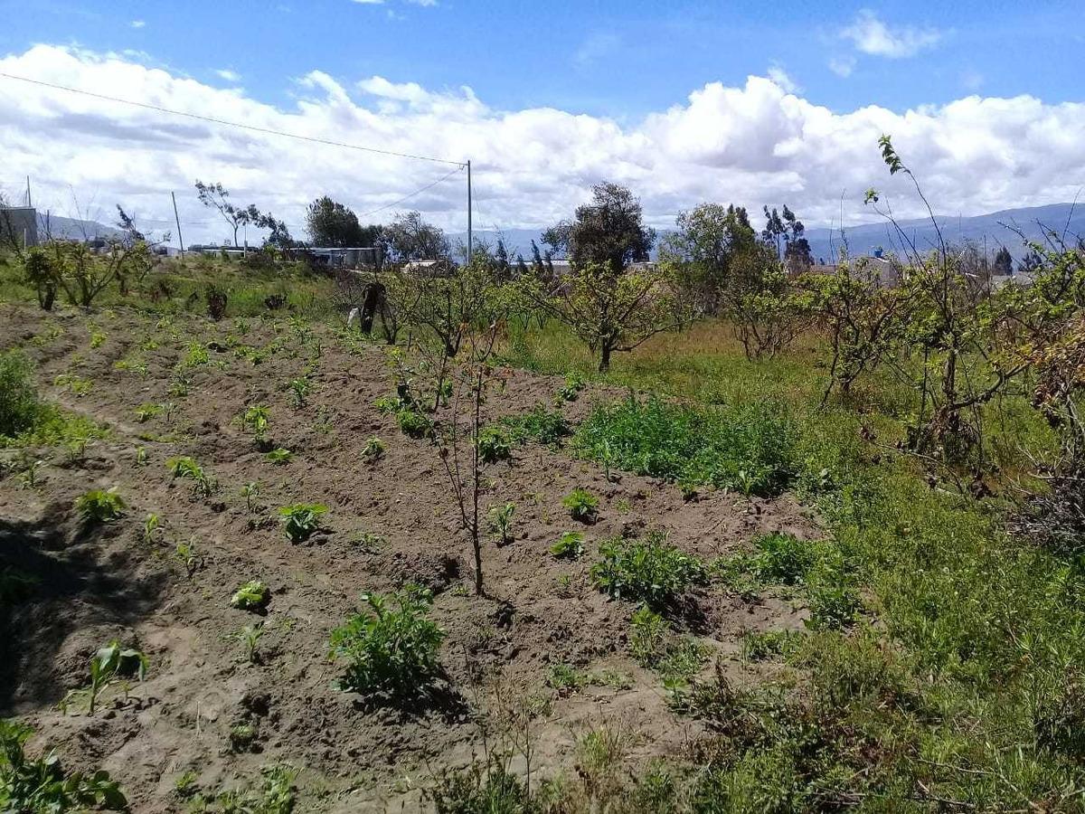 terreno en amabto-tungurahua (precio negociable)