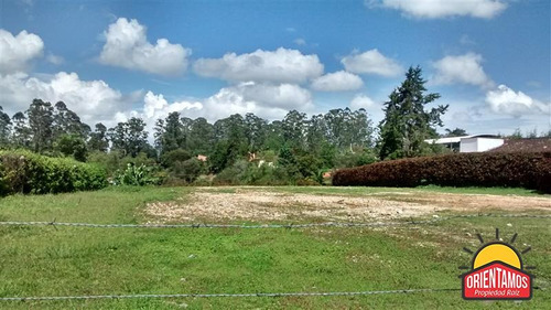 terreno en arriendo en rionegro - rionegro