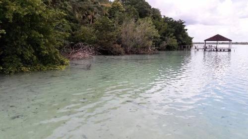 terreno en bacalar con frente de laguna