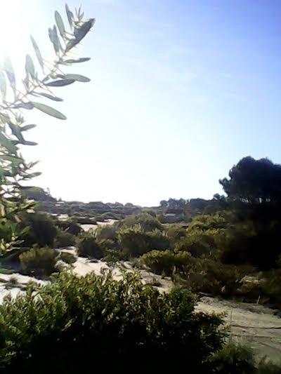 terreno en balneario punta rubia rocha 2 cuadras de la playa