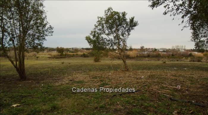 terreno en barrio peñarol de 3 hectáreas
