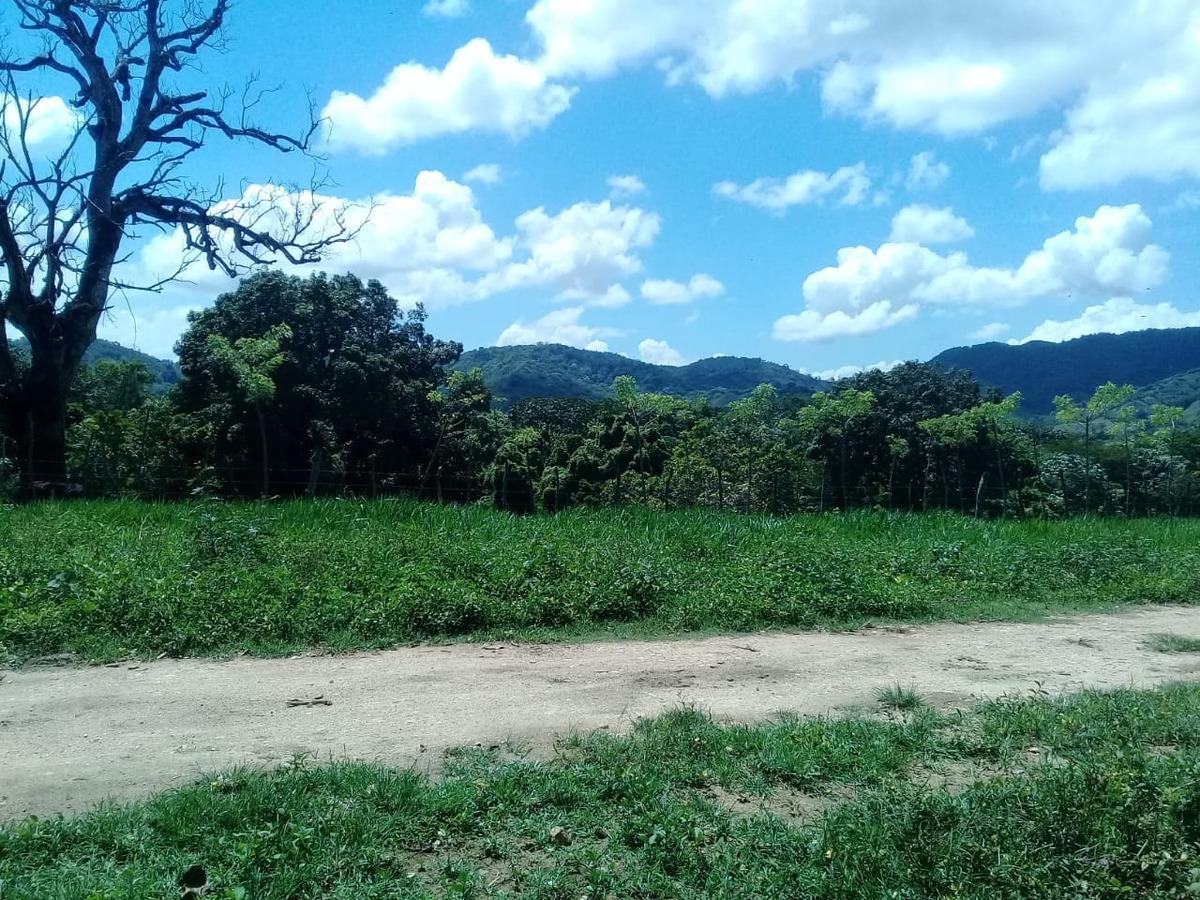 terreno en bonao n6301