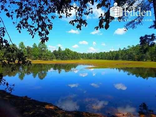 terreno en bosques de llano grande