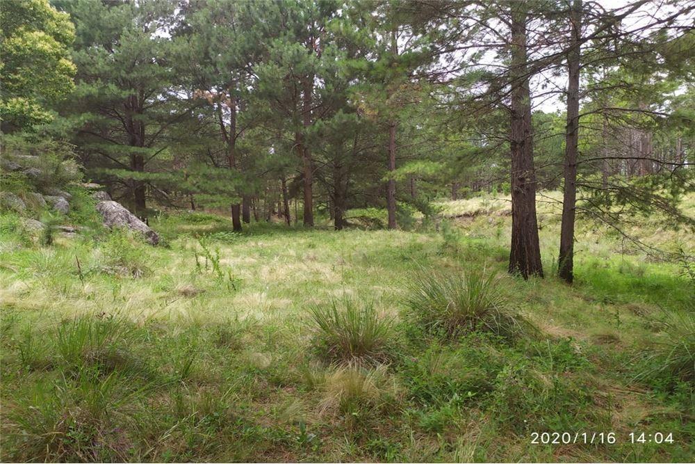 terreno en calamuchita, yacanto, 9 hectáreas