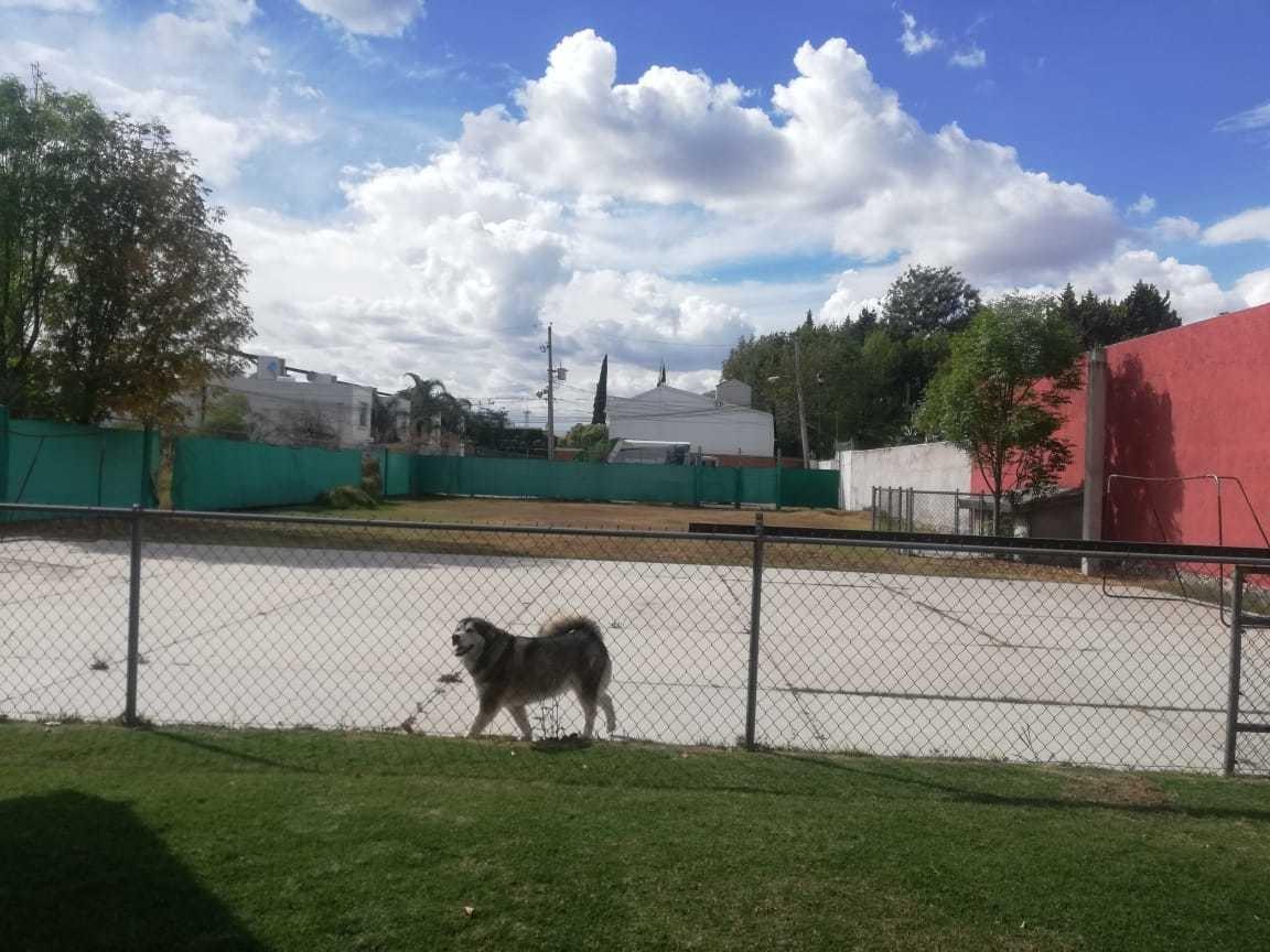 terreno en camino real a cholula frente universidad madero