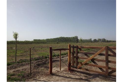 terreno en cervantes