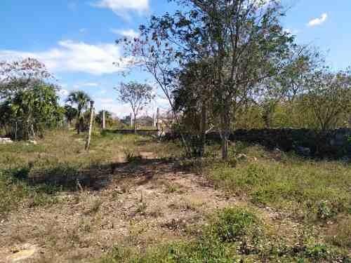 terreno en chicxulub pueblo en yucatán