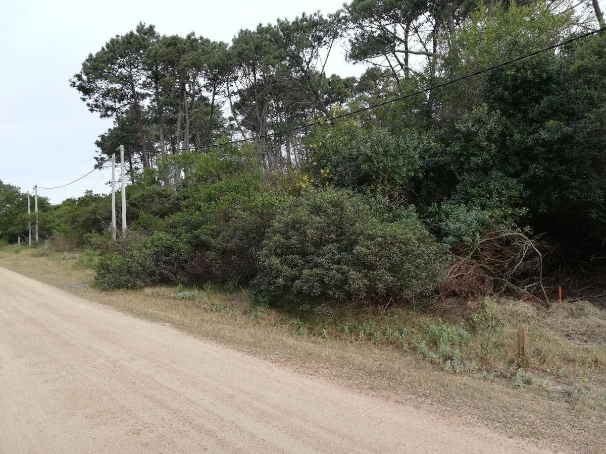 terreno en chihuahua a poco del mar (ref. 2753)
