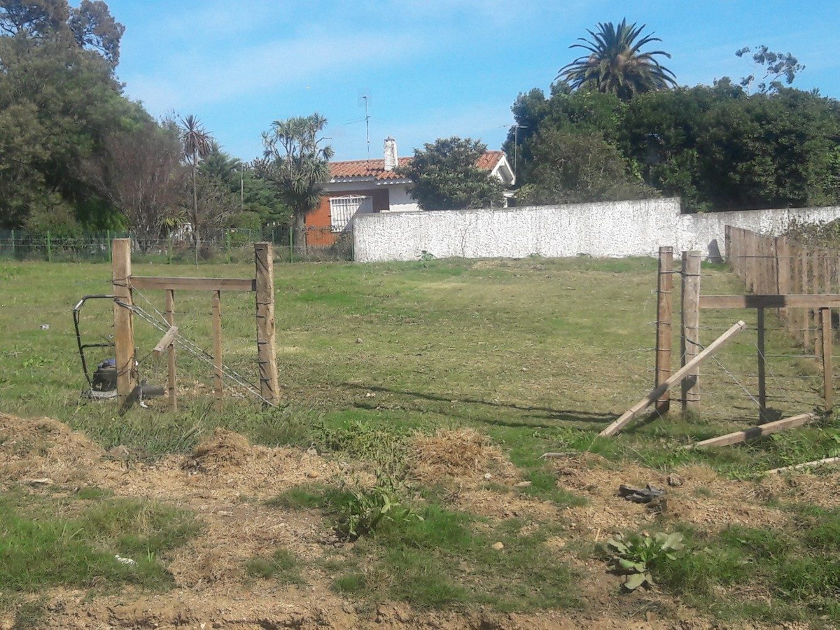 terreno en colonia nicolich