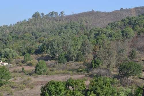 terreno en condominio con vista al lago, peña y bosque.