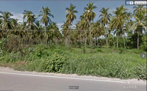 terreno en coyuca de benitez carr. acapulco-zihuatanejo