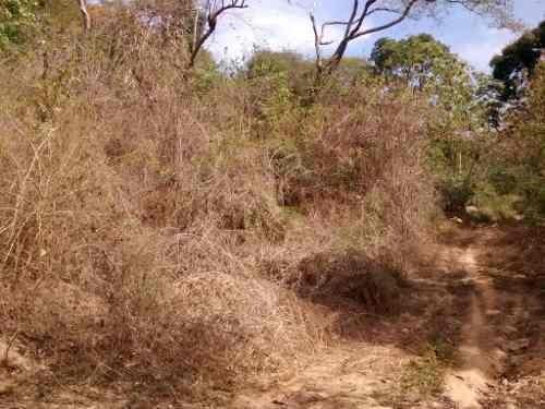 terreno en cumbres de llano largo, acapulco