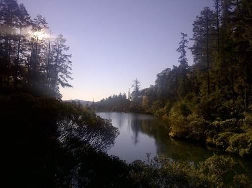 terreno en el bosque! fracc. bosque de san cayetano, mineral del monte