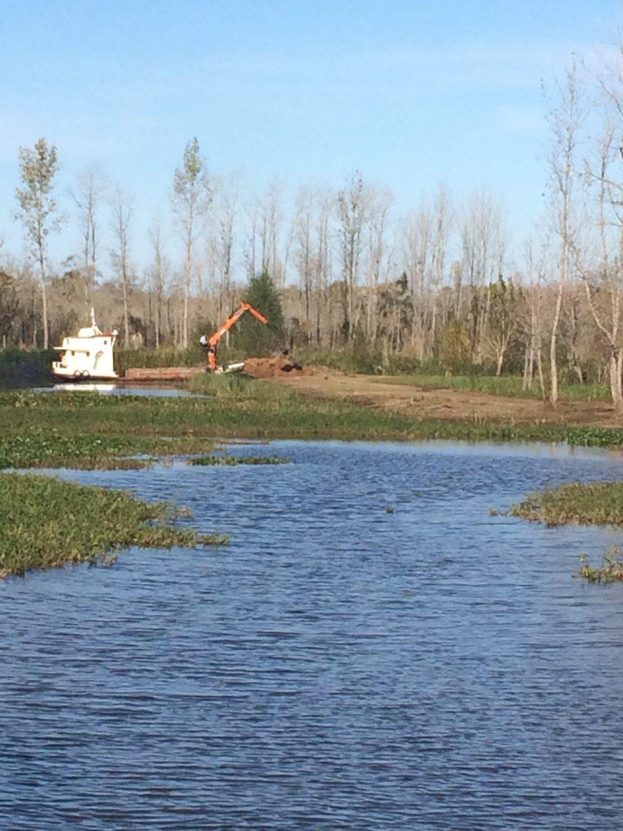 terreno en el delta