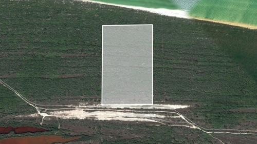 terreno en el hermoso puerto de celestún, yucatán