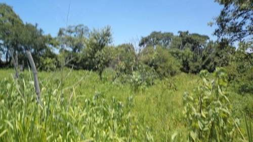 terreno en emiliano zapata proximo a chiconcuac morelos