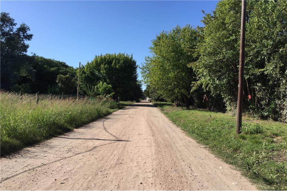 terreno en esquina con vegetacion varia
